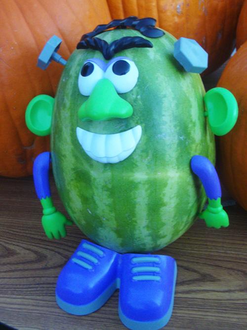 Watermelon Frankie