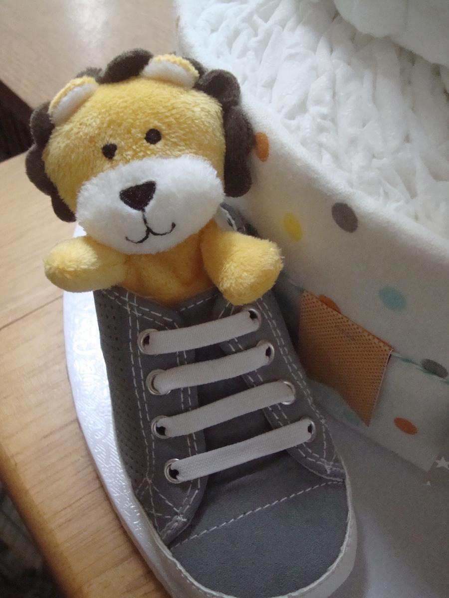 Lion in Shoe